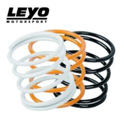 LEYO Motorsport – Diverter/BOV Standard Srping Kit – L038B