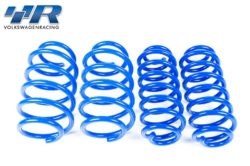 Racingline Sport Lowering Spring Set – VW Golf Mk5